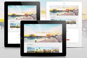 旅游行业网站建设解决方案 解决方案